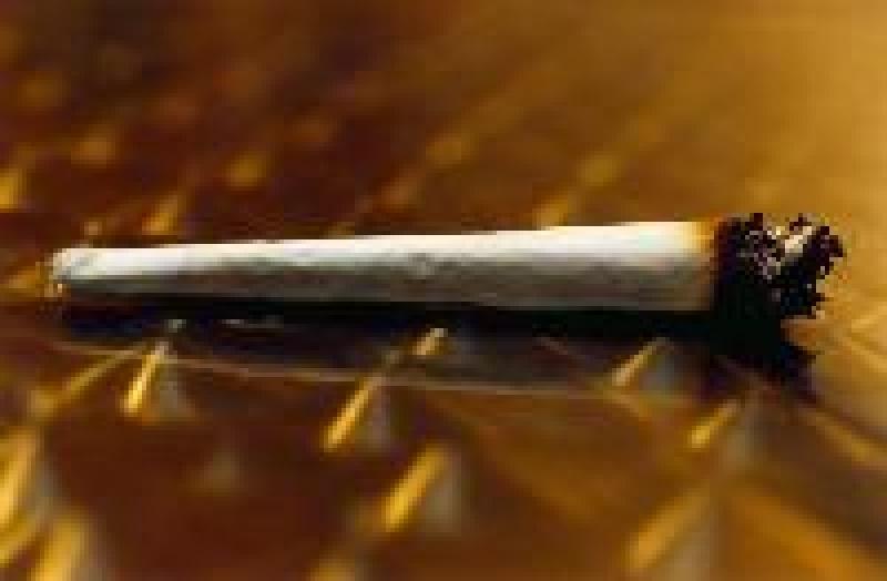 Nem igaz, hogy nem ártalmas a marihuána