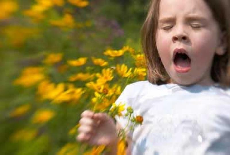 Tények és tévhitek az allergiáról