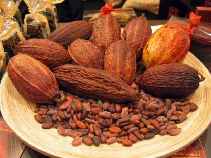 Csokit enni nem csak jó, hanem egészséges is