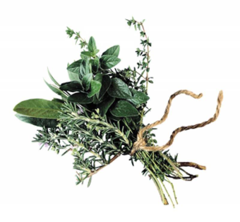 Békét kötni a gyógynövényekkel