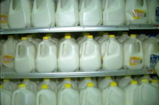 Akiknek méreg a tej