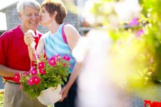 A szerelemhormonok csak harminc hónapig termelődnek agyunkban
