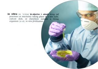 Antioxidánsok a meddőség hátterében?