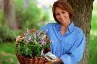 A gyógynövényeket betiltó EU szabályozás elleni petícióról