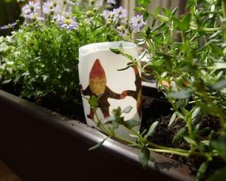 Kerti törpe a virágládában
