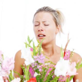 Már te is allergiás vagy?