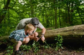 Hogy gyerekeinknek is maradjon talpalatnyi föld