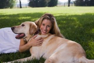 Ismerd fel, ha öregedni kezd a kutyád!