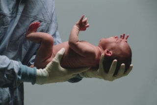 A születés utáni stressz megnehezíti a tanulást