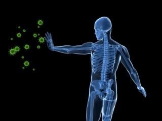 Hogyan előzhetjük meg a téli betegségeket?