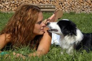 Szinte százszázalékos biztonsággal kiszagolják a kutyák a rákot