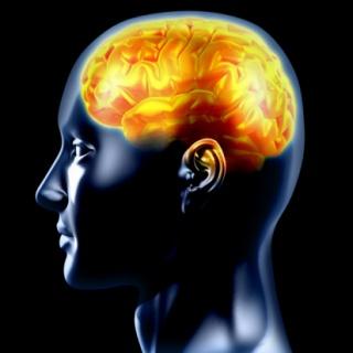 Agyserkentő ételek – energia az agynak