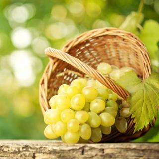 Találtak egy fogyasztó alkotóelemet a szőlőben