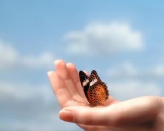 ÖKO-WORKSHOP a fenntartható háztartásokért