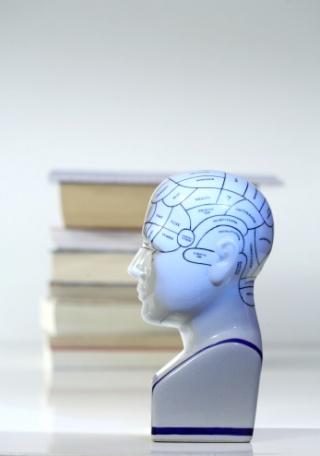 Az olvasás kedvező hatásai az agyra