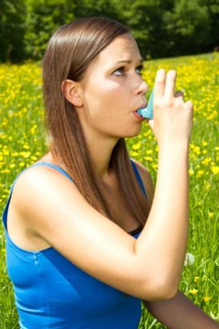 A katicavirág segíthet az asztmában szenvedőknek