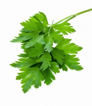 Zöld fűszerekkel a magas vérnyomás ellen