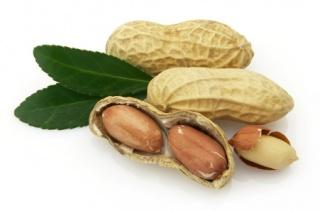 A terhesség alatti változatos étrend segíti az allergia megelőzését
