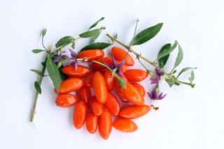 A világ leggazdagabb C-vitamin-forrása