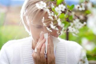 Pollenhelyzet: megkezdődött az idei szezon