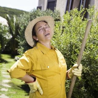A kerti munkákkal járó derékfájás megelőzése és gyógyítása