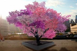 Negyvenféle gyümölcs terem egyetlen fán