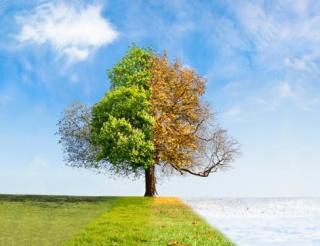 A születési idő és a hangulati zavarok összefügghetnek