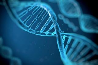 Megakadályozhatók az örökletes betegségek?