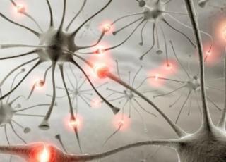 Új felfedezés: segítség a függőségek kezelésében