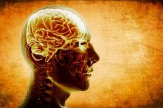 Károsítják az agyat a videójátékok?