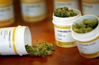 Felelősebben kellene használni a marihuánát