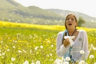 Támad a nyári pollenszezon