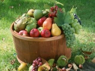 Egészséges éveket adhat a kiegyensúlyozott táplálkozás