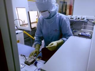 Egyre több betegség gyógyítható őssejttel