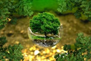 Ma is tegyünk valamit Földünkért!