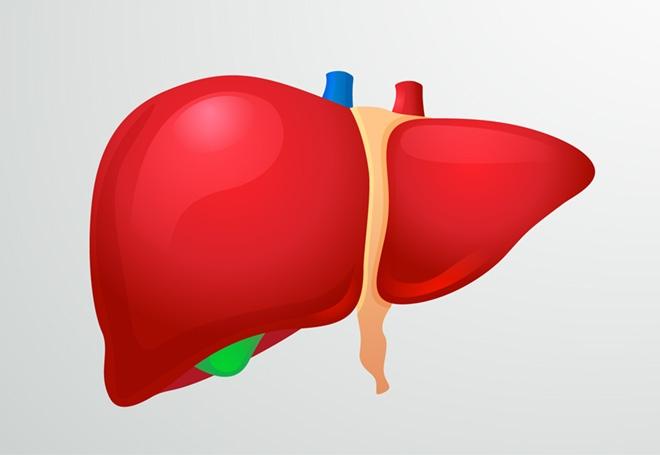 A hepatitis veszélyei