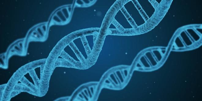 Egy ritka kórkép – mitokondriális betegség