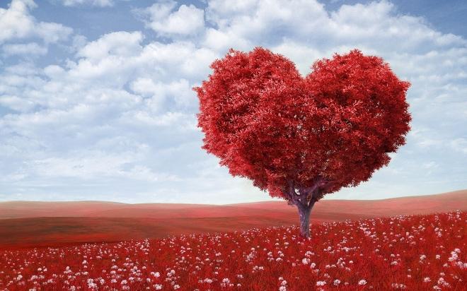 Mit jelent egy szívdobbanás?
