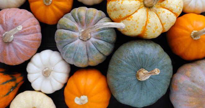 Őszi-téli vitaminforrás: tökmagolaj
