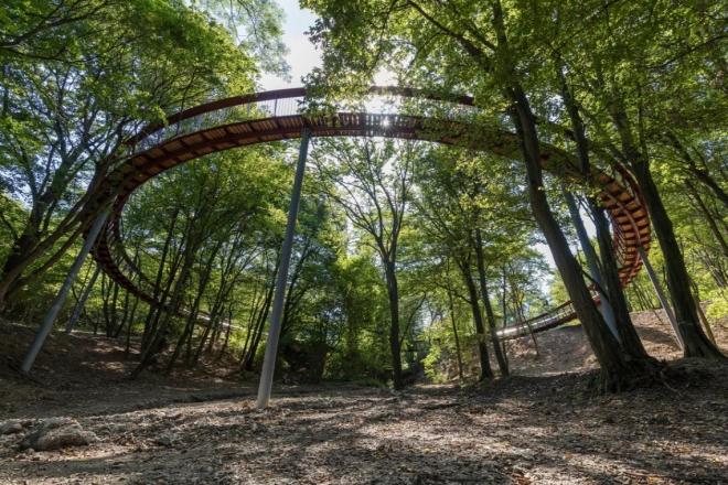 Kör alakú lombkorona-ösvény nyílt a Gerecsében