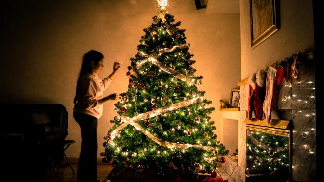 Miért állítunk fenyőfát karácsonykor?