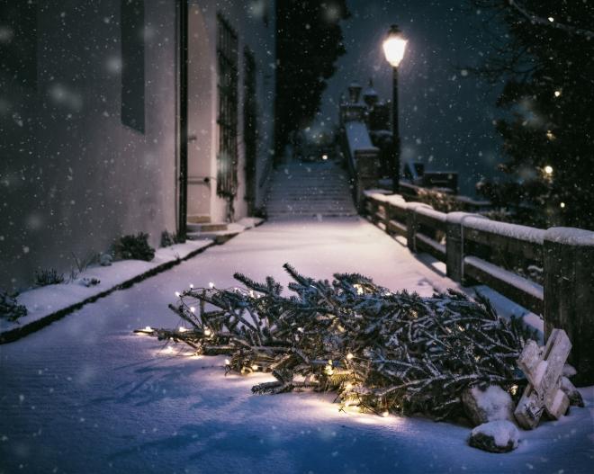 A karácsonyfa sorsa