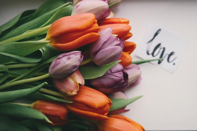Nőnapi virágok jelentése