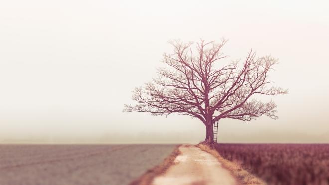 Társadalmi elkülönülés: Egyedül élni járvány idején
