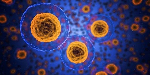 Főszerephez juthat a Sigma-1 receptor a koronavírus kezelésében