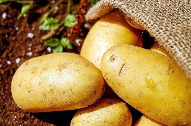 A sültkrumpli fogyasztását szorgalmazzák Belgiumban