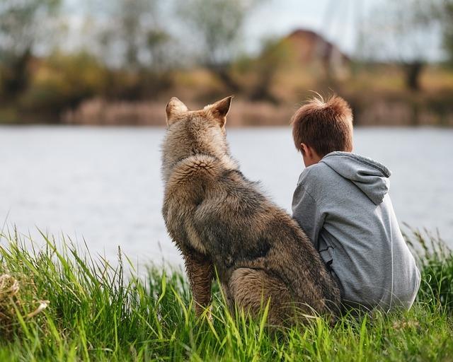 A kutya úgy viselkedik az idegenekkel, akár a gyerekek