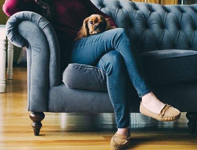 A kutyák hatása az anyaságra