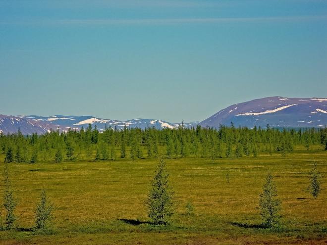 Szibéria klímaváltozásában az ember a fő tényező