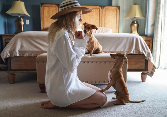 Mi történik a kutyák agyában, amikor beszélünk hozzájuk?